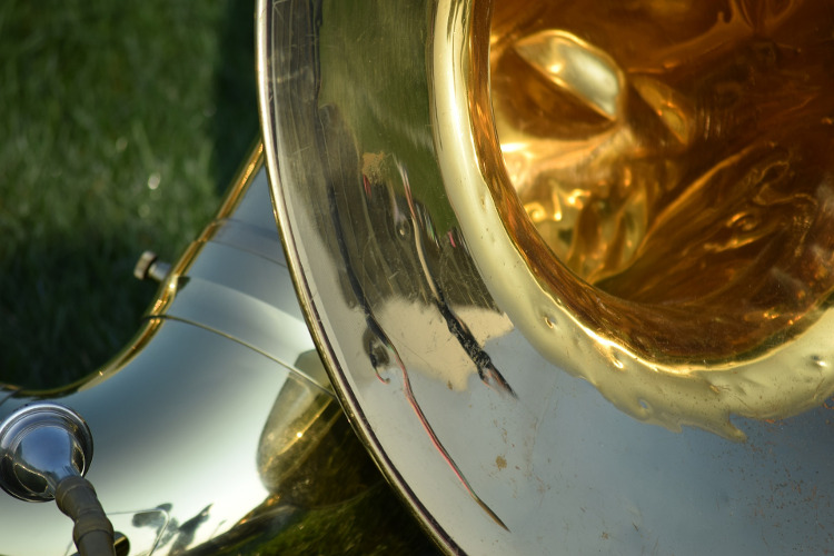 tuba in the grass